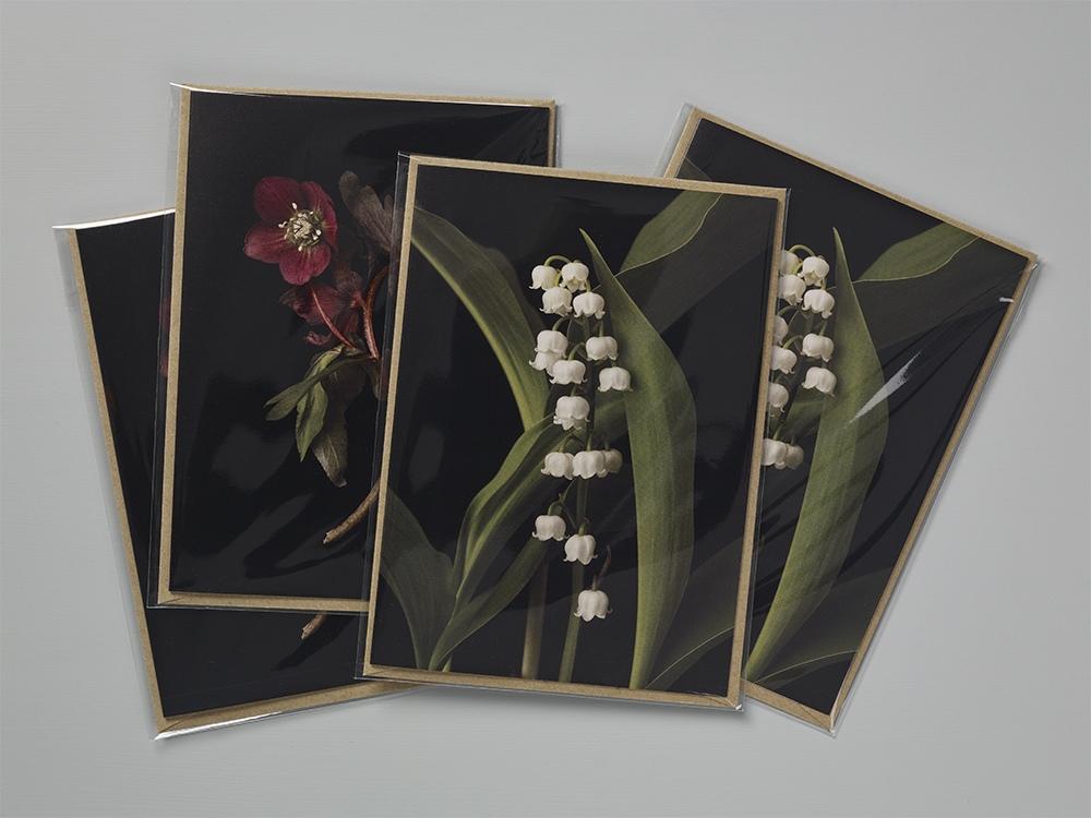 cards_18.05.21_41797