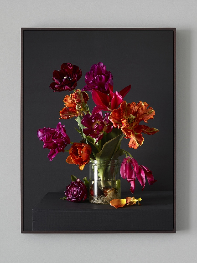 """18 """"x 24"""" C-Type Print in Tray Frame (no glass)"""