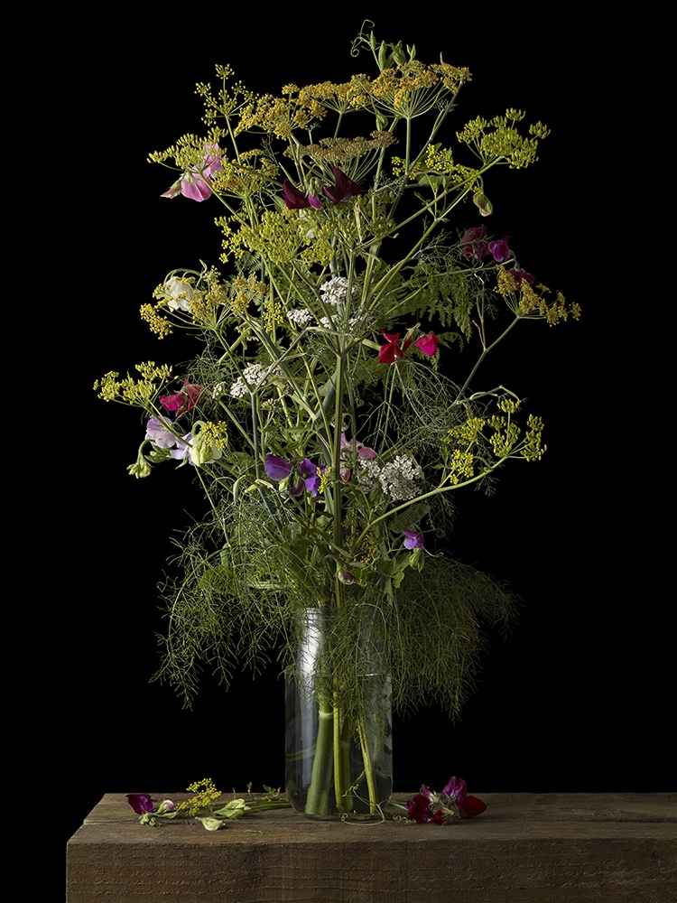Mixed Plants 3