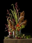 Allotment Plants 1
