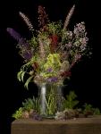 Mixed Plants 5