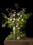 Mixed Plants 6