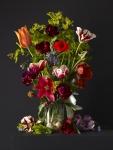 Mixed Tulips 2