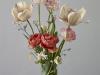 Spring Plants 3