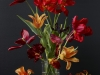 Mixed Tulips 6