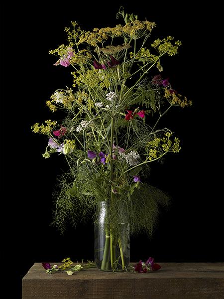 mixedflowers_10146.blog